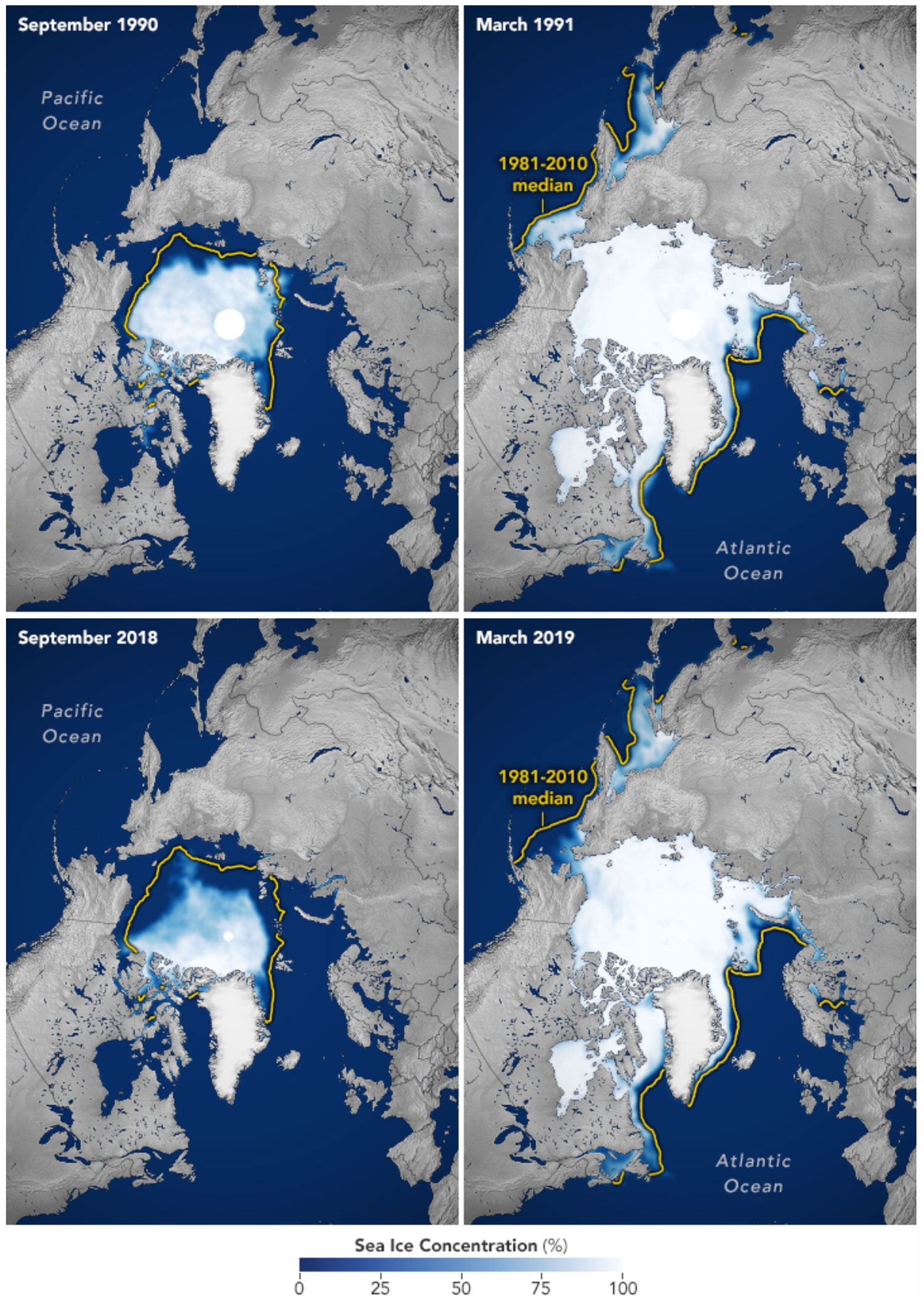 Four maps showing comparing the reduction in Arctic sea ice between 1990-1991 and 2018-2019.