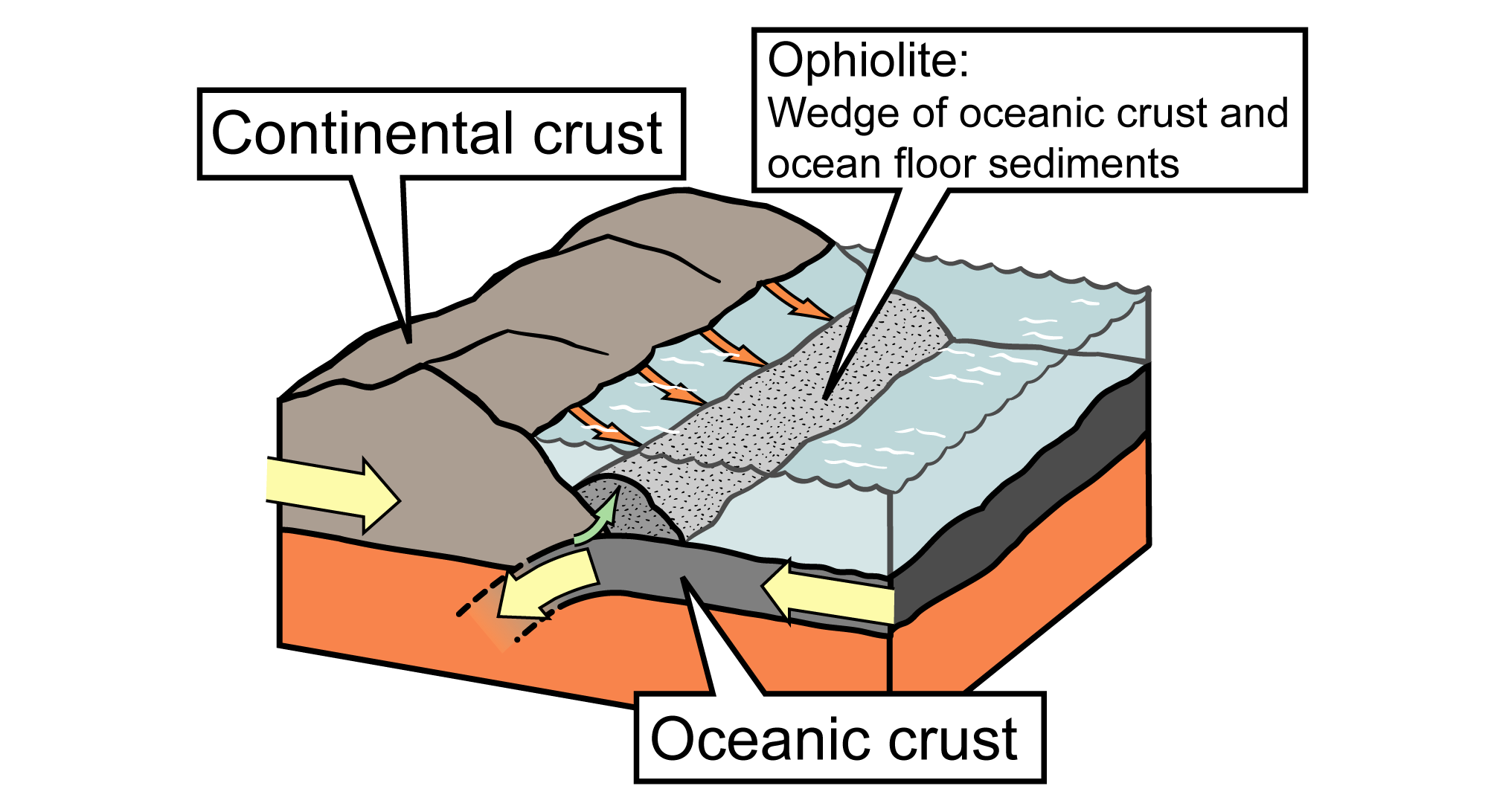 Illustration of how ophiolites form at subduction zones.
