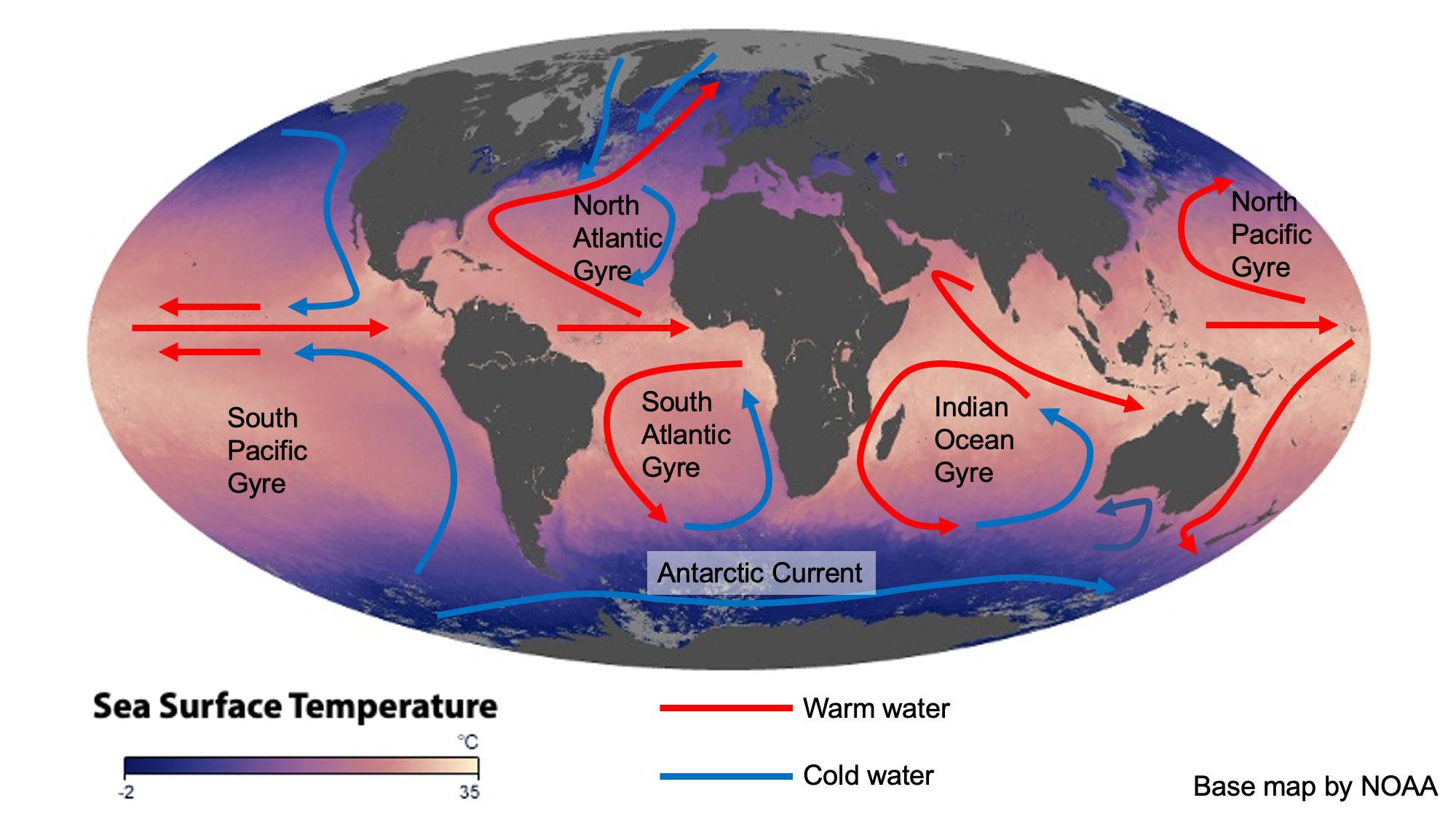 Map showing global patterns of ocean surface circulation.