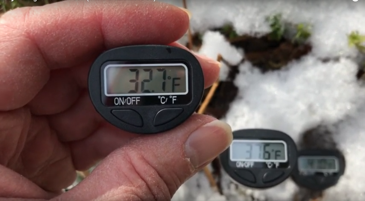 Measuring soil temperature at different depths