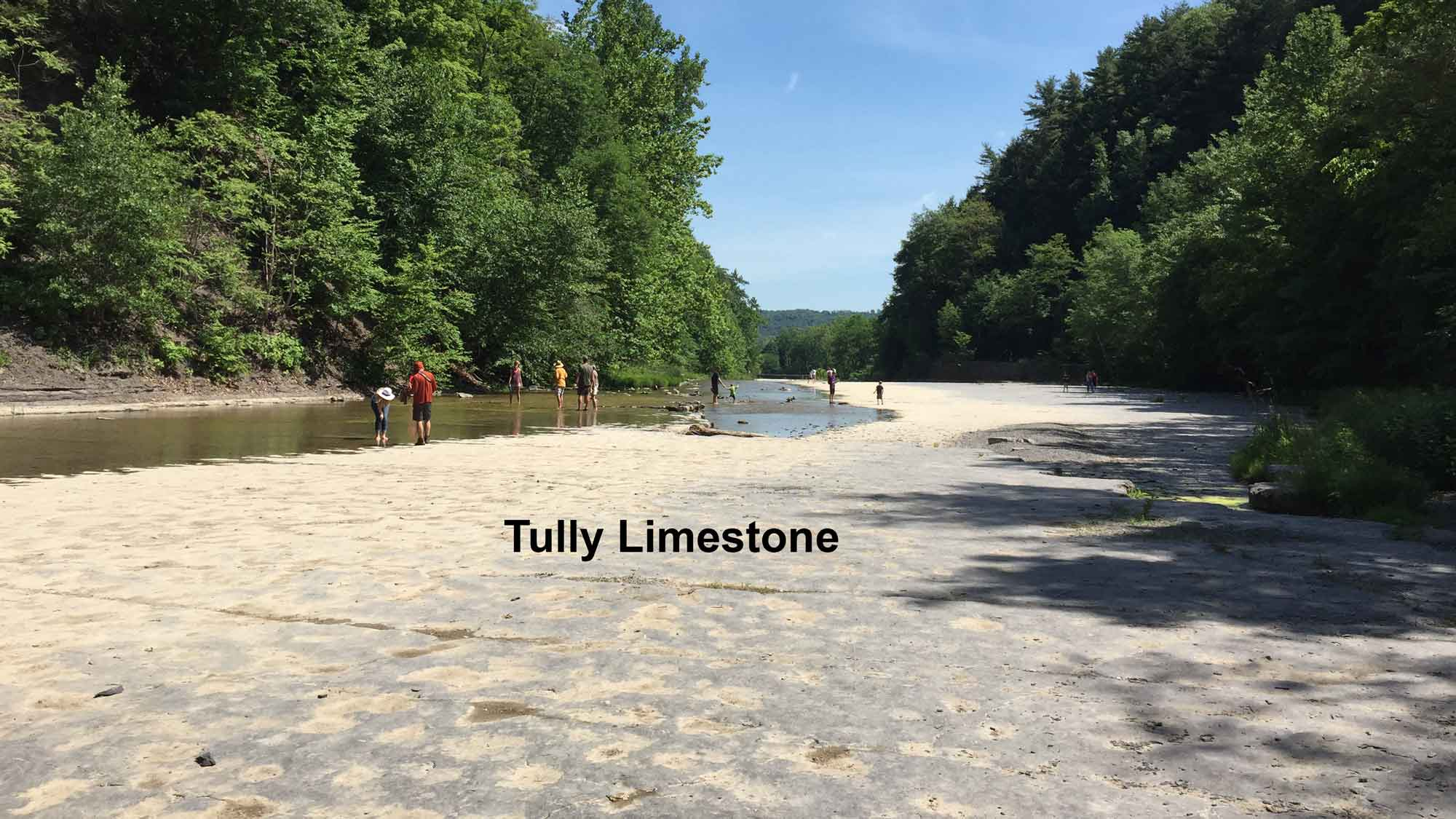 Photograph of Tully Limestone exposed on the bed of Taughannock Creek.