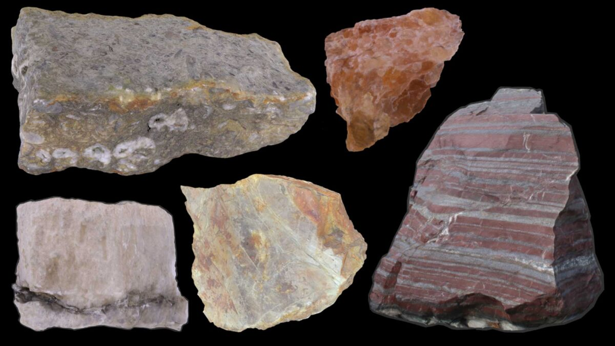 Image shows various types of chemical and organic sedimentary rocks.