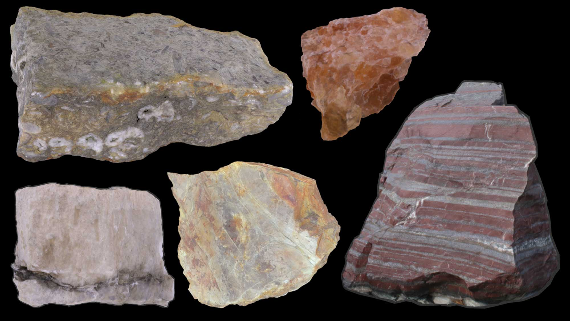 Image of various types of chemical and organic sedimentary rocks.