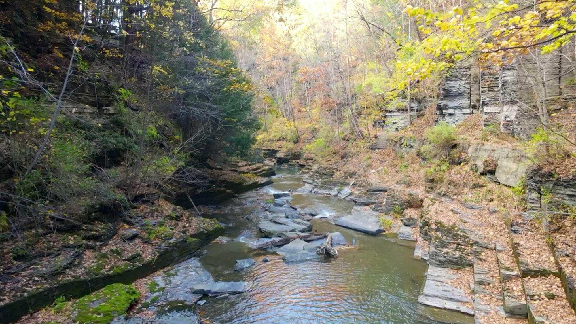 Photograph of Six Mile Creek.