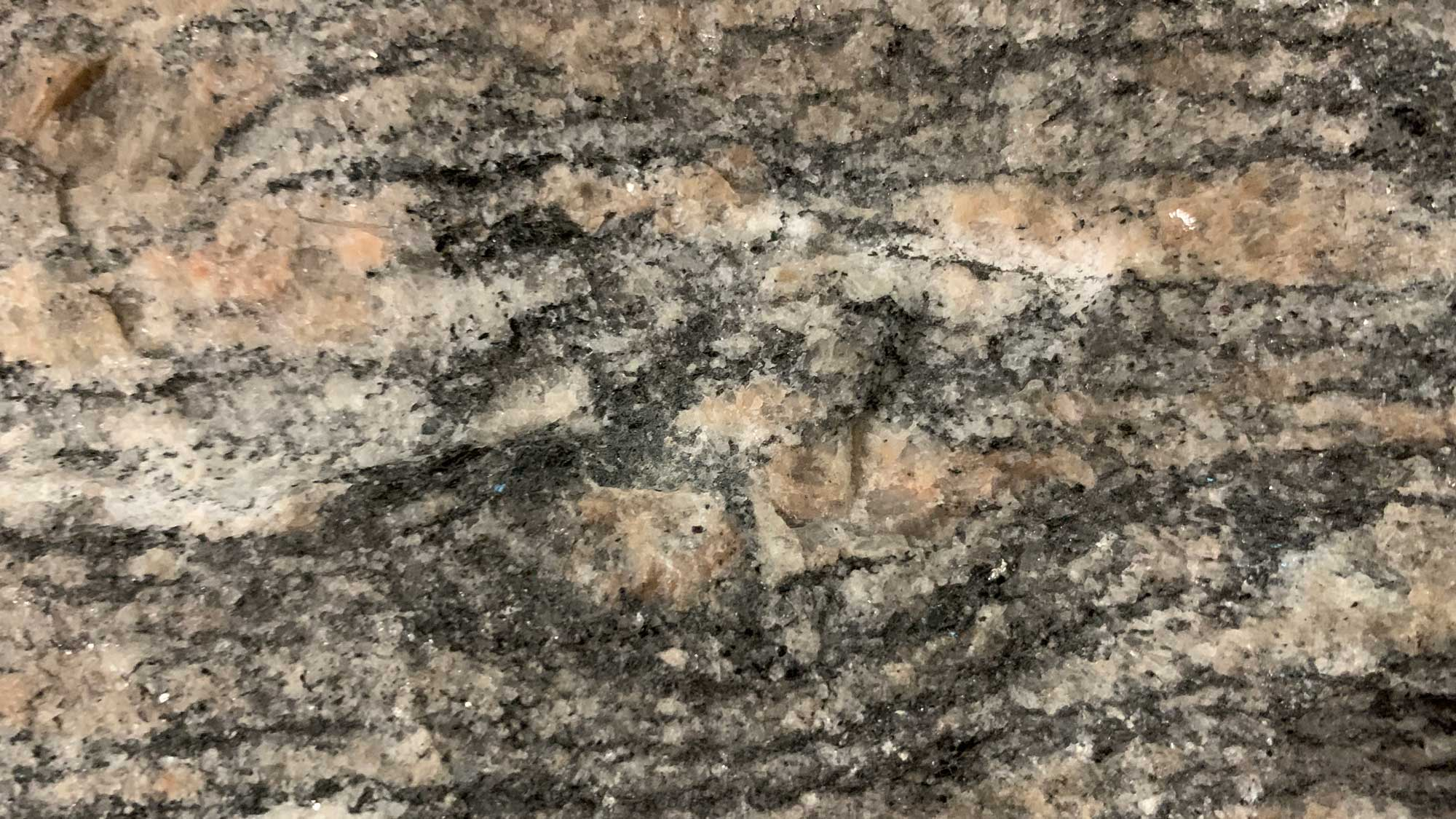 Up-close photograph of gneiss, a type of metamorphic rock.