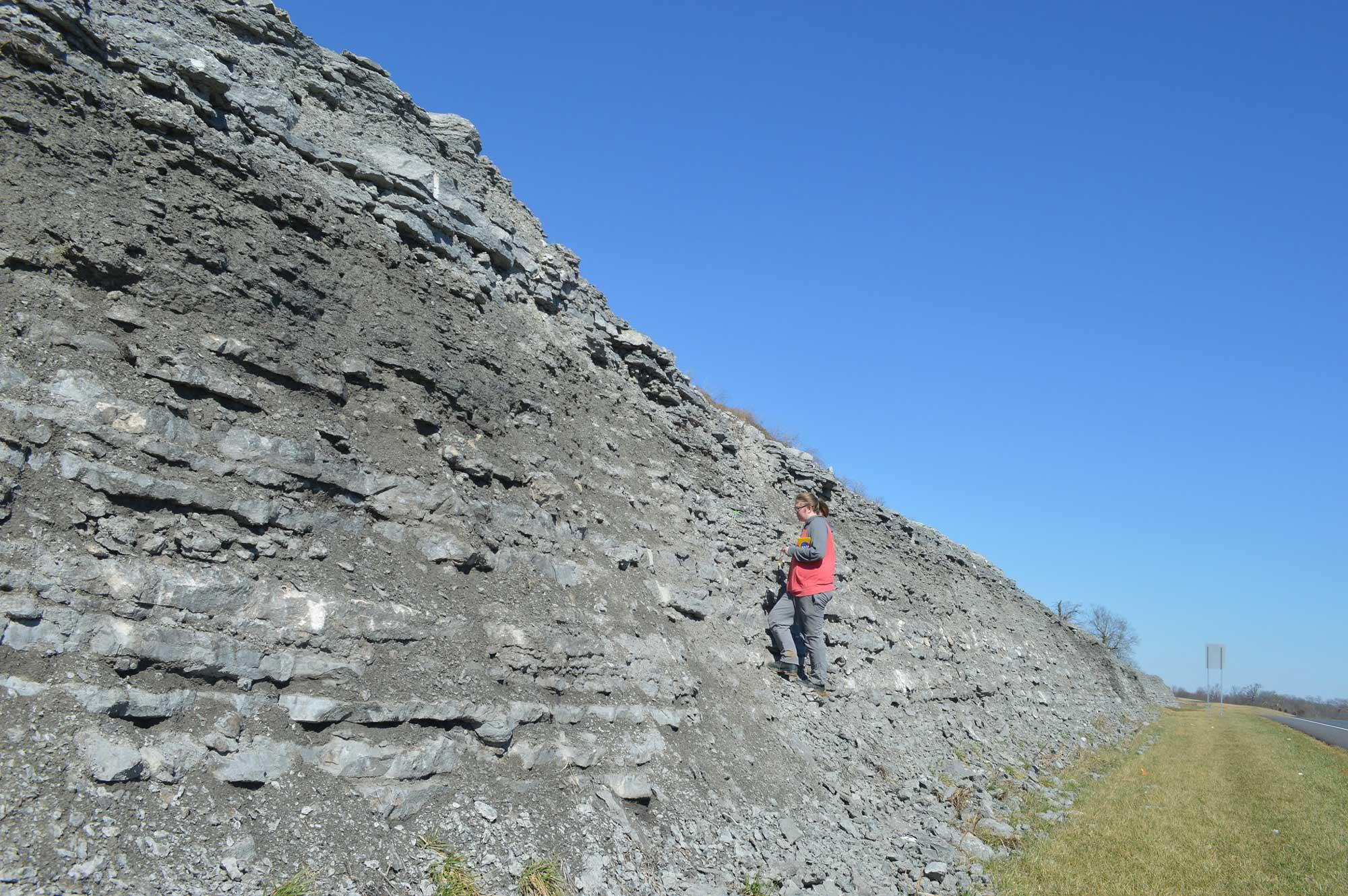 Photograph of an outcropping of the Ordovician Lexington Limestone.