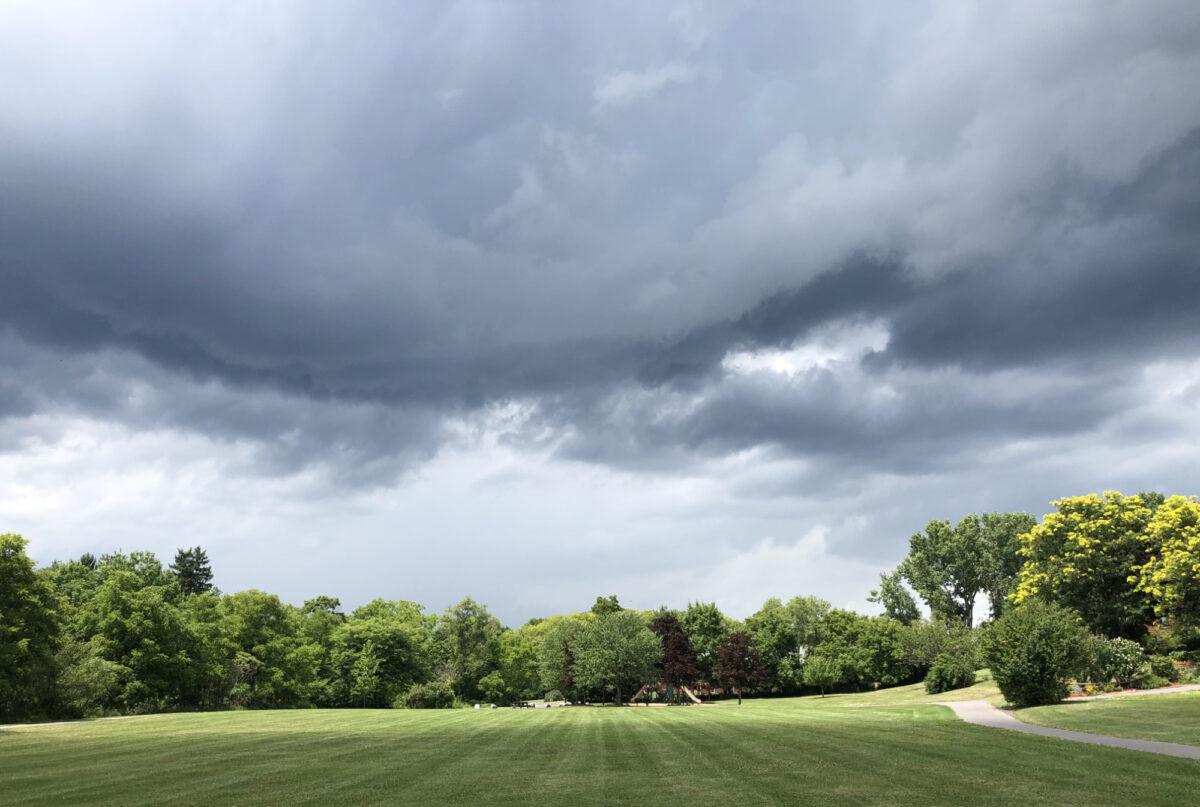 Dark storm clouds over a field of grass