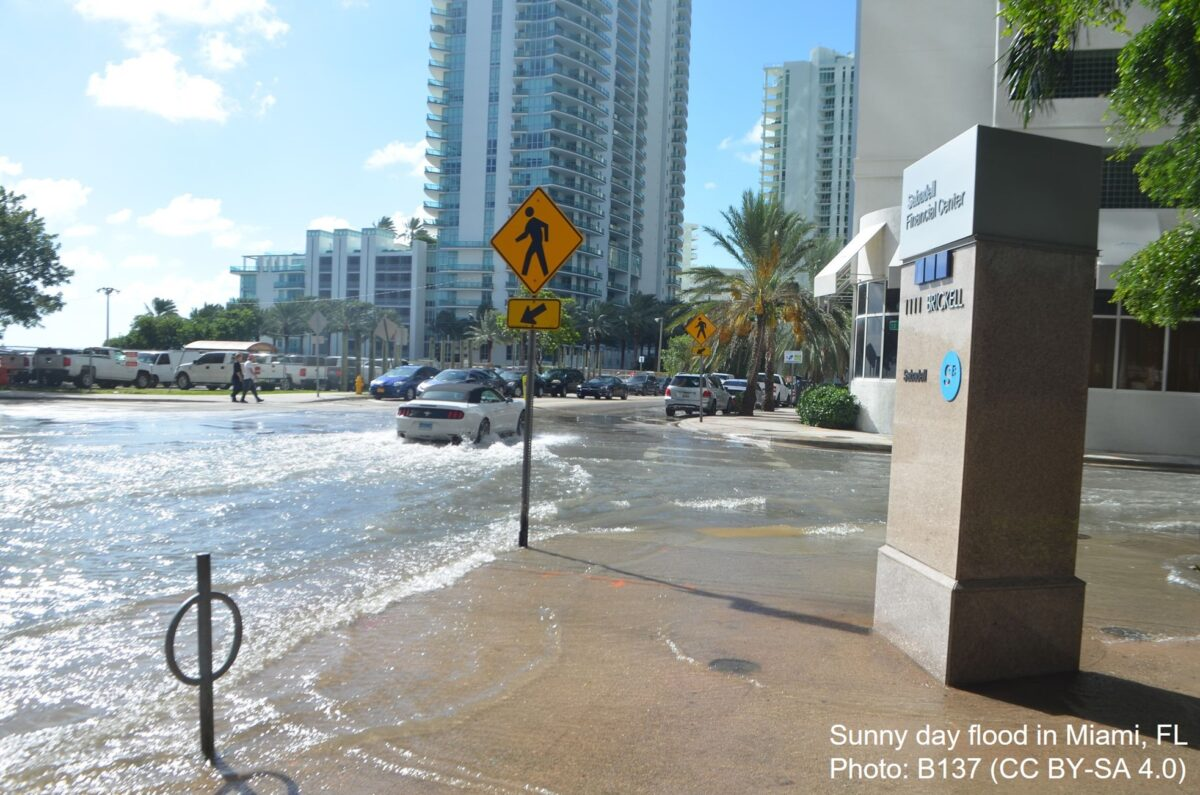 Photo of flooding on a sunny day in Miami, FL. The flooding is due to sea level rise.